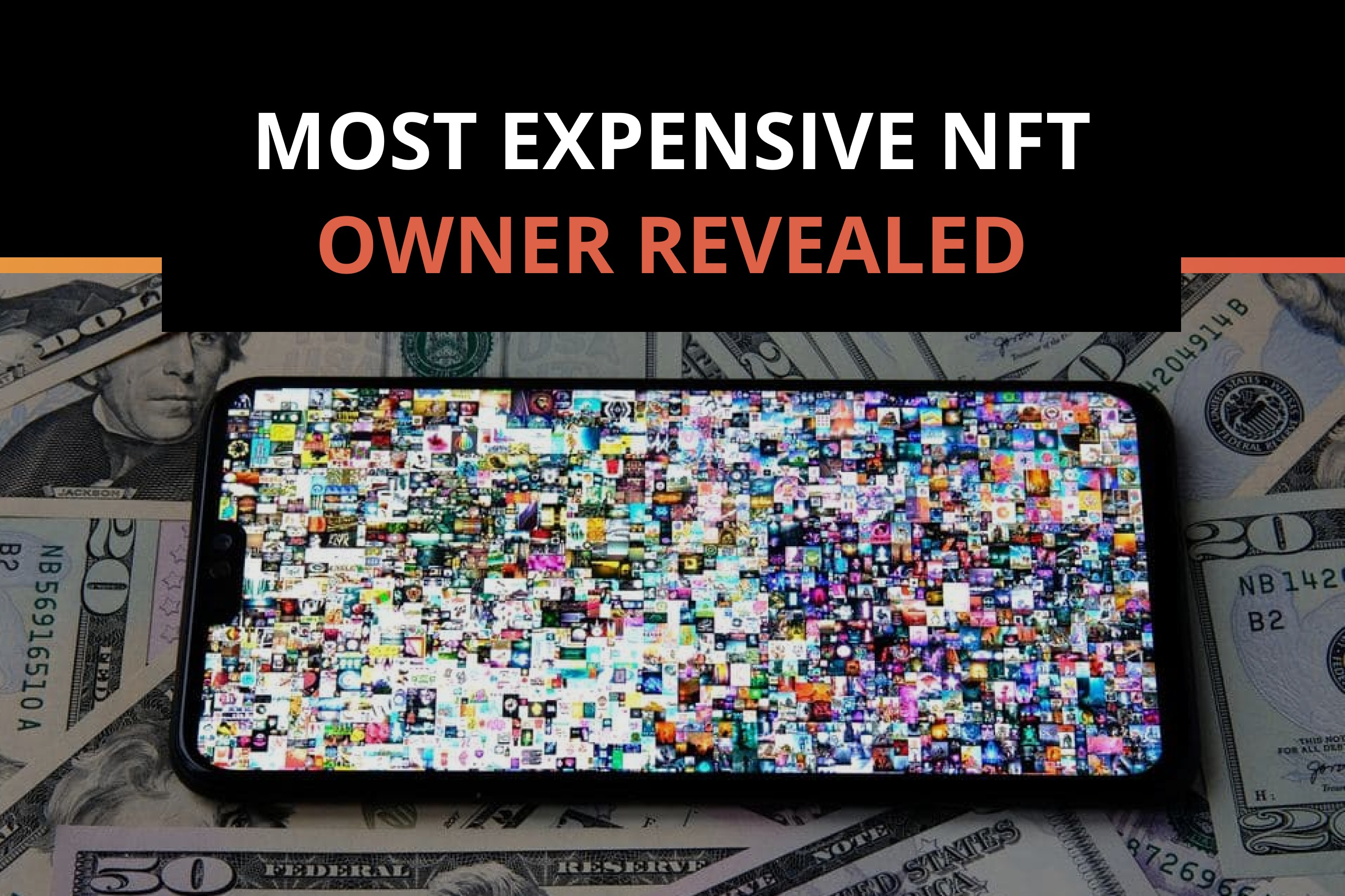Most Expensive NFT Owner Revealed